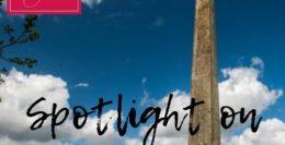 Spotlight on Wellington